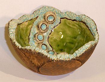 Schale-Korallen-3