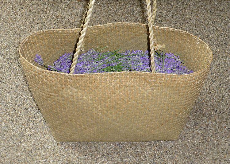 Lavendelernte2014-2