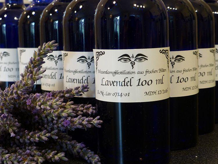 Lavendelernte2014-5