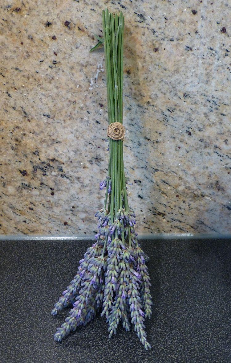 Lavendelernte2014-6