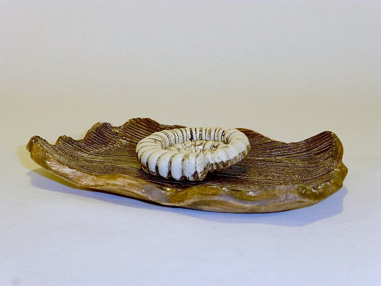 Seifenschale-Holz-2_ji